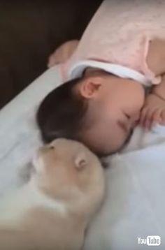キュートな1人と1匹に癒やし スヤスヤ眠る赤ちゃんに猫ちゃんがスリスリ