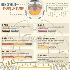 A fascinating look at what happens and what parts are activated in your brain when playing the piano 🎹🎼 #infographic #science #piano #orchestra #london #pianist #brain #performers #instrument #musician #musicaltheatre #musicals
