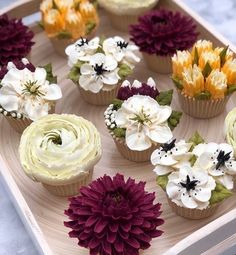Which cupcakes would you choose for your 5 or Cupcakes Flores, Flower Cupcakes, Succulent Cupcakes, Flower Cookies, Cupcake Arrangements, Tolle Cupcakes, Beautiful Cupcakes, Buttercream Flowers, Specialty Cakes