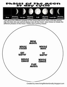 moon phases worksheet printable free printables phases of the moon notebooking page science. Black Bedroom Furniture Sets. Home Design Ideas