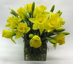 Daffodils arranged in a contemporary glass cube.