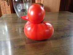 おいしいのかな…変わった形をした「野菜」&「果物」の写真いろいろ:らばQ