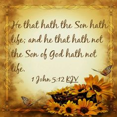 1 John 5:12 KJV He that hath the Son hath life; and he that hath not the Son of God hath not life.