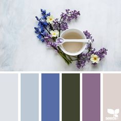 today's inspiration image for { color spring } is by @c_colli ... thank you, Cristina, for another amazing #SeedsColor image share!