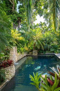 Tropical Pool Landscaping, Tropical Garden Design, Tropical Backyard, Backyard Pool Designs, Swimming Pools Backyard, Swimming Pool Designs, Backyard Landscaping, Landscaping Ideas, Tropical Gardens