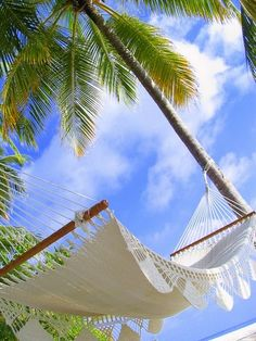 Relaxation in a Hammock. The Maldives