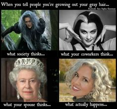 1000 Images About Going Gray Gracefully On Pinterest