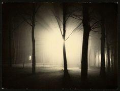 Lyonel Feininger - Untitled [Night View of Trees and Street Lamp, Burgkühnauer Allee, Dessau]  1928.  Gelatin silver print