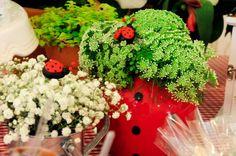 Chá de joaninhas  #ladybug #joaninha #decoracaodecha #chadefraldas #chadebebe #santinhadopauoco #decoracaodeeventos #partydecor