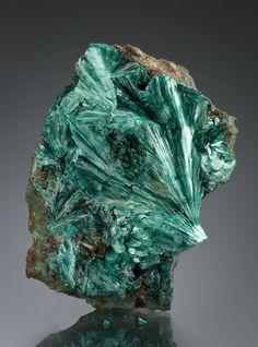 Tyrolite - Utah