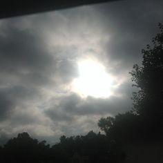 .@lalivi93 | Day4praise for the singing, praise for the morning#julyphotochallengefpoe#mor...