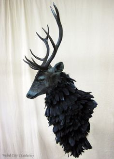 The Ravenstag, or Nightmare Stag, from NBC's exquisite TV series Hannibal. See more photos at weirdcitytaxidermy.deviantart.com