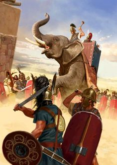 Battle of Numancia by Sandra Delgado Ancient Rome, Ancient Greece, Ancient History, War Elephant, Punic Wars, Roman Warriors, Greek Warrior, Empire Romain, Man Of War