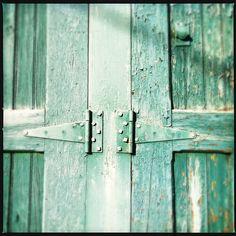 lichen green doors
