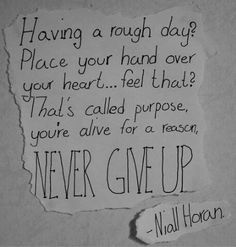 "*reads till half way* *puts hand on chest* *read a little more* *cries* he's such an inspiration. I love you Nialler! Guys don't give up! You have a purpose here. God made you to live and experience life. Not kill yourself cause ""your not good enough"" in my eyes and also Niall's, you.are.perfect."