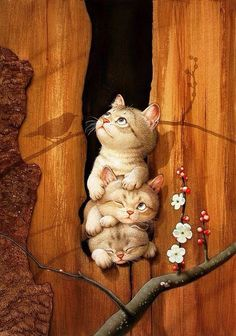 Gatos… Makoto Muramatsu Makoto Muramatsu Brilliant illustration and so I love the clear lines, the colors and the light! I Love Cats, Crazy Cats, Cute Cats, Adorable Kittens, Image Chat, Cat Drawing, Cute Illustration, Cat Art, Cats And Kittens