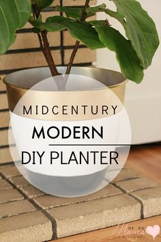 A Mid Century Modern inspired planter DIY that is easy to create and afford.