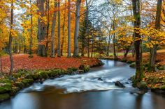 27 Exquisite Places To See Brilliant Fall Colors This Year---Sandnes, Norway Amazing Places On Earth, Places Around The World, Fall Pictures, Nature Pictures, Beautiful World, Beautiful Places, Autumn Scenes, Cabin In The Woods, All Nature