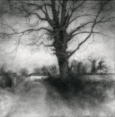 Sue Bryan - Bog Road Tree (Realist Black and White Charcoal Drawing of Tree and Country Road) Landscape Sketch, Landscape Drawings, Landscape Art, Amazing Drawings, Realistic Drawings, Charcoal Art, Charcoal Drawings, Pencil Drawings, White Charcoal