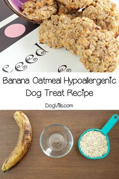 Need a yummy hypoallergenic dog treat recipe that's easy enough for novice bakers to make? Try out banana oatmeal treats! Your pups will love them! Dog Cookie Recipes, Dog Biscuit Recipes, Dog Treat Recipes, Dog Food Recipes, Banana Dog Treat Recipe, Banana Treats, Homemade Dog Treats, Healthy Dog Treats, Healthy Food