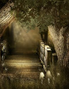 Woody path backgrounds by moonchild-lj-stock on DeviantArt Episode Interactive Backgrounds, Episode Backgrounds, Scenery Background, Black Background Wallpaper, Digital Backgrounds, Photo Backgrounds, Scenery Pictures, Cool Pictures, Pictures To Paint