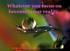whatever you focus on becomes your reality