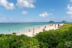 Beachfront Villa Lanikai, Vacation Rental in Lanikai North Shore Oahu Hawaii USA Villa
