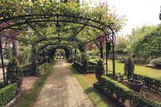 ivy vines garden hotel le pigonnet aix en provence