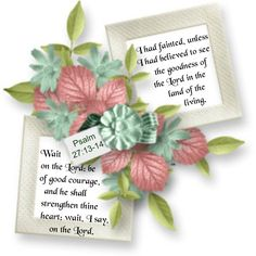 13 I had fainted, unless I had believed to see the goodness of the Lord in the land of the living. <3 14 Wait on the Lord: be of good courage, and he shall strengthen thine heart: wait, I say, on the Lord. <3 Psalm 27:13-14 KJV
