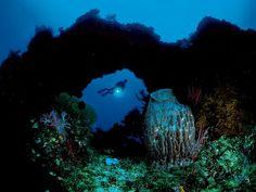 Papua New GuineaPhotograph by David DoubiletA big barrel sponge filters the crystalline water near a coral bridge in Kimbe Bay.