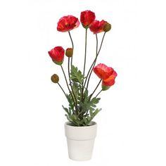 Bonita y elegante amapola roja artificial con maceta. Tiene una altura de 52,5cm y una anchura de 25cm. Natural, Plants, Fake Plants, Potted Plants, Poppies, Pretty, Red, Elegant, Flora
