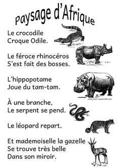 Funny Animal Quotes 515662226072647368 - Poésie en maternelle Source by morganeblancdew Web Animal, Animal Stencil, French Kids, Cartoon Tv Shows, How To Make Animations, Image Name, Animal Activities, Animal Sketches, Animal Wallpaper
