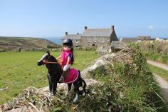 Seren the Welsh Mountain Pony in Cornwall  #Lottie dolls