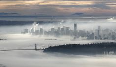The downtown core of Vancouver and the Lions Gate Bridge rise above a morning fog in this view from Cypress Mountain in West Vancouver, British Columbia November 17, 2008.
