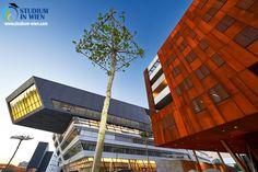 Венский университет экономики и бизнеса — крупнейший экономический университет Вены, который входит в десятку самых престижных вузов Австрии