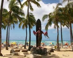 From dolphins to Segways: best tours on Oahu, Hawaii