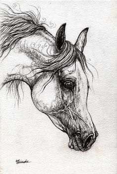 horse drawings | ... Horse Drawing 57 Drawing - Arabian Horse Drawing 57 Fine Art Print