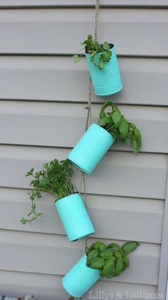 Herb Garden Inspiration - tin cans...now I know what to do with the empty coffee containers!