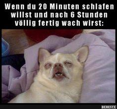 Wenn du 20 Minuten schlafen willst und nach 6 stunden..