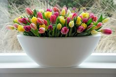 There is a Dutch organisation that maintains a list of registered tulip varieties. #1800flowers