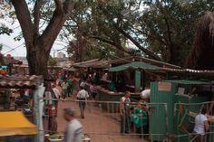 Local Farmer's Market: el Rincon, Cuba   The resurgence of l…   Flickr