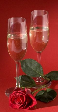 A Fine Romance - Champagne for two and a red rose for someone special.