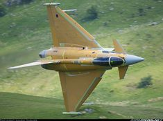 Eurofighter EF-2000 Typhoon F2 aircraft picture