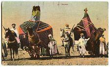 cpa colorisée Algérie Maroc Tunisie BASSOURS palanquins dromadaires chameaux