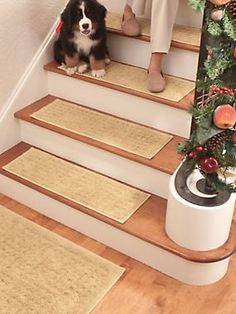 vista stair treads set of safetyproof your home with our set of carpeted nonslip stair treads for wood and carpet stairs alike - Non Slip Stair Treads