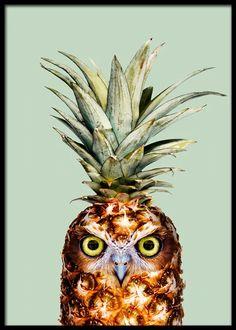 Pineapple Owl Art Print by Jonas Loose - X-Small Gustav Klimt, Wassily Kandinsky, Buy Posters Online, Owl Shower, Kids Poster, Owl Print, Art Mural, Wall Art, Fruit Art