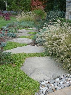 Garden design post example 9408859284 for one charming yard. Types Of Mulch, Types Of Grass, Low Maintenance Garden Design, Low Maintenance Plants, Small Garden Design, Garden Landscape Design, Outdoor Landscaping, Outdoor Gardens, Landscaping Ideas