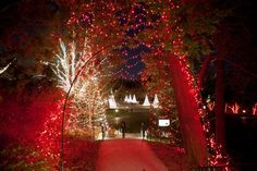Dazzling lights highlight this incredible holiday celebration       As you stroll through the grounds, marvel at lights strung on nearly 40 miles of wire glowing in the trees.