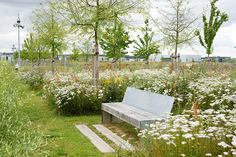 Mont-Evrin Park by Urbicus « Landscape Architecture Works Park Landscape, Urban Landscape, Landscape Architecture, Landscape Design, Architecture Jobs, Different Plants, Types Of Plants, Landscaping Tips, Garden Landscaping