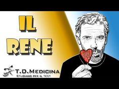 5.8 - Test Medicina - Rene - YouTube